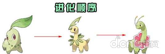 大菊花怎么样 大菊花属性努力值加点详解       大菊花,香草神奇宝贝