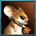 天堂2:血盟宠物美味起司