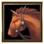 光明大陆坐骑远行马