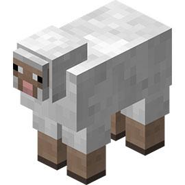 我的世界羊
