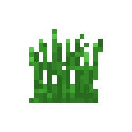 我的世界植物草丛