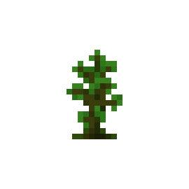 我的世界树苗